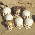 Human remains from the Nazca period, Peru