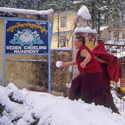 Nuns playing snowball, McLeod Ganj, Dharamsala, India.