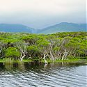 Wilsons Promontory National Park, Victoria, Australia.